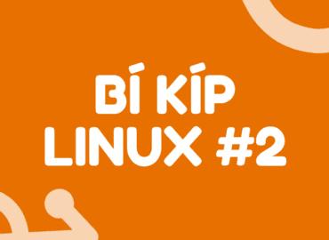 bi-kip-linux-02
