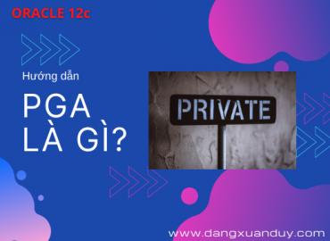 PGA trong Oracle Database là gì