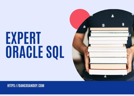 Ebook Expert Oracle SQL